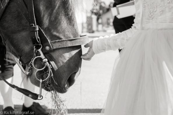 _DSC2573_ernest_young_kicki_fotograf_nikon_leica_portra_jarvsobaden_contryside_hotel_hast_vagn_halsingland_landet_sverige_brollop_wedding_summer_sommar_love_