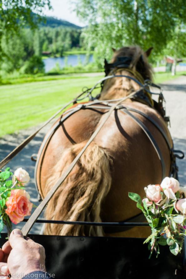 L1006750_ernest_young_kicki_fotograf_nikon_leica_portra_jarvsobaden_contryside_hotel_hast_vagn_halsingland_landet_sverige_brollop_wedding_summer_sommar_love_